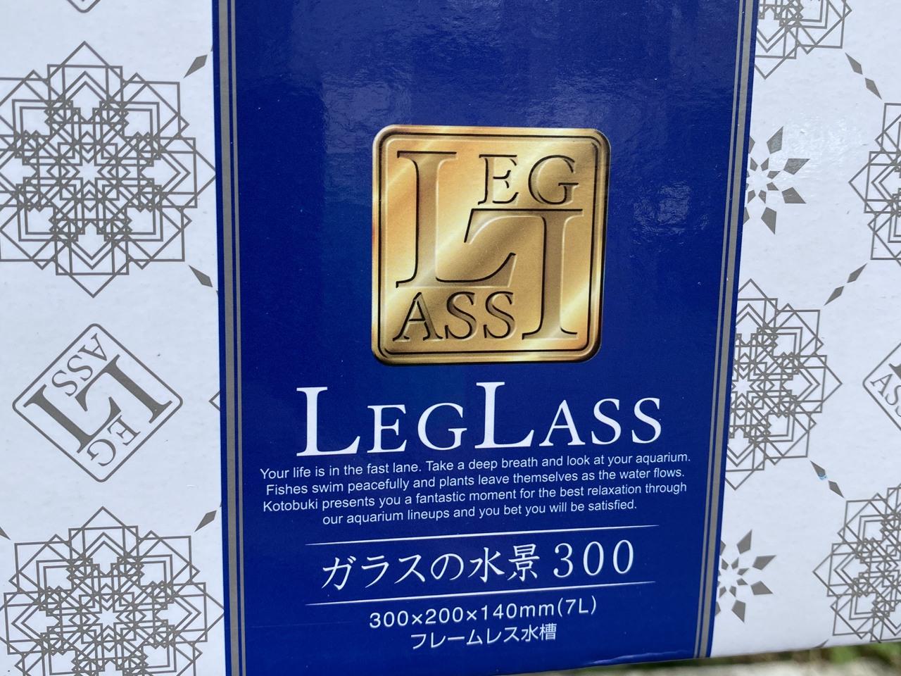 コトブキ工芸のガラスの水景という水槽を購入してベタを2匹飼に